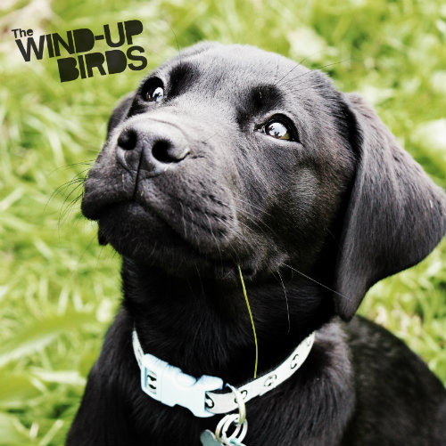 The Mild Awards by the Wind-Up Birds