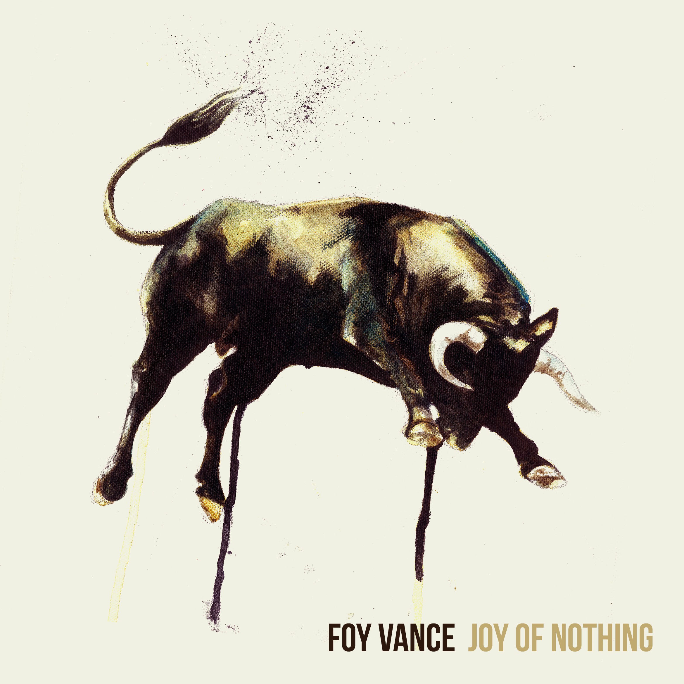 Foy_Vance_-_Joy_of_Nothing_album_cover